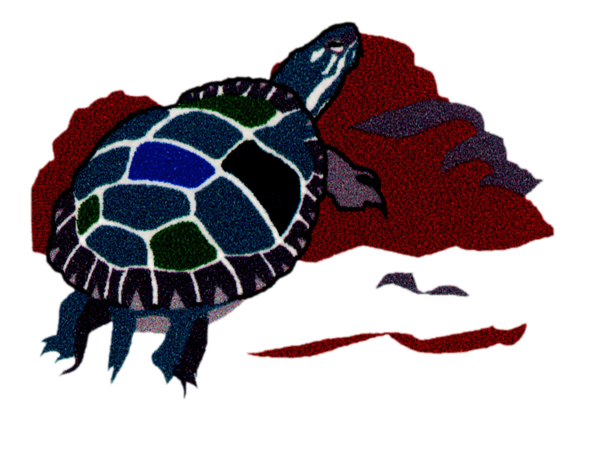 Turtle Gap Inc